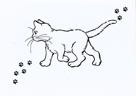Association L'ANGE Laurence pour les chats