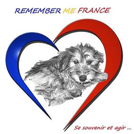 Association Remember Me France - Sauvetage de chiens roumains !